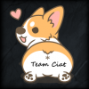 Corgi in a Team