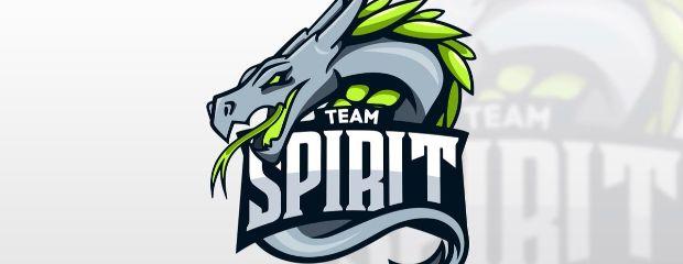 Team Spirit подписали микс Positive Guys